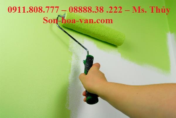 Bán dụng cụ sơn hoa văn tỉnh Tiền Giang